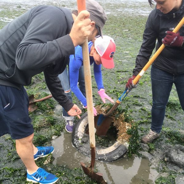 Cleaning up the beach!